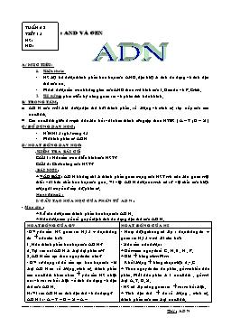 Giáo án môn Sinh học Lớp 9 - Tiết 15: ADN